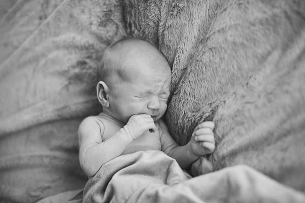 Newborn photography Northern Ireland-freddy